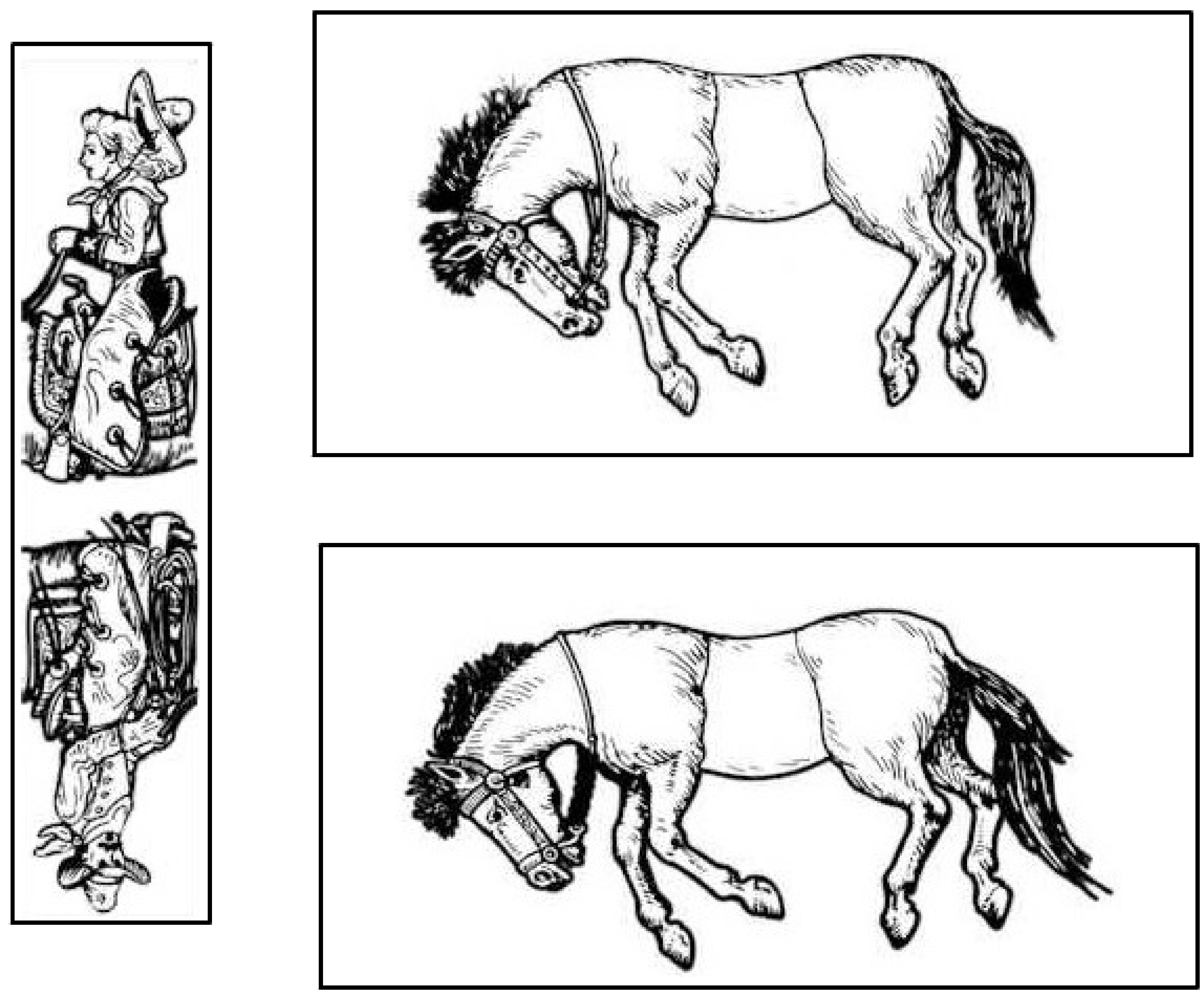 Uncategorized Horse Puzzle the famous trick donkeys a sam loyd puzzle david richeson division by zero